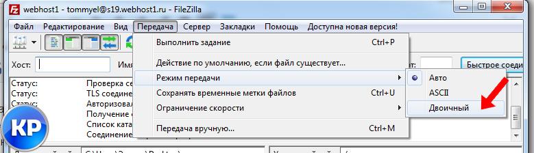 Двоичный режим передачи данных